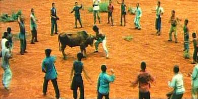 01 Alexander Bullfighter Lou