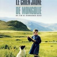 Le chien jaune de Mongolie (Шар нохойн там) 2005