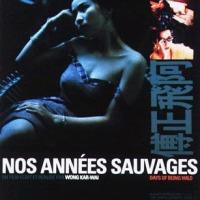Nos années sauvages (阿飛正傳) 1990