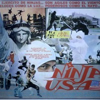 Ninja in the USA (猛龍煞星) 1985
