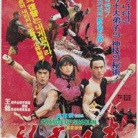 Les Gardes de Shaolin (武儈) 1984