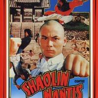 Shaolin contre Mantis (少林醉八拳) 1982