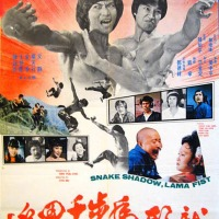 Snake shadow lama fist (龍形虎步千里追) 1976