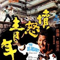 The Delinquent (憤怒青年) 1973