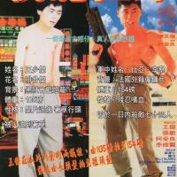 Invincible (戰龍在野) 1992